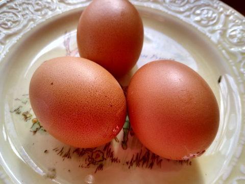 Blown Eggs